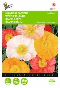IJslandse Papaver excelsior (gemengd) zaden