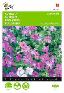 Aubrieta (gemengd) zaden