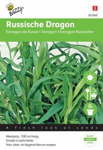 Russische Dragon - voorkant