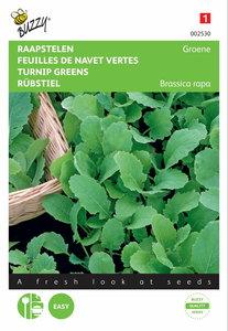 Groene Raapstelen zaden