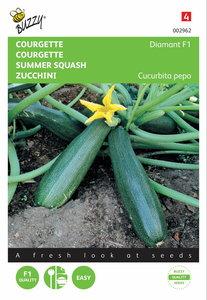 Courgette (Zucchini) Diamant F1 zaden