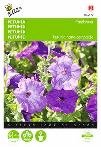 Petunia Hybrida Compacta Raadsheer zaden