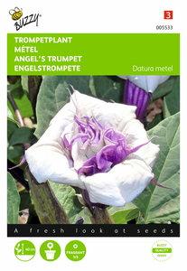 Trompetplant zaden kweken
