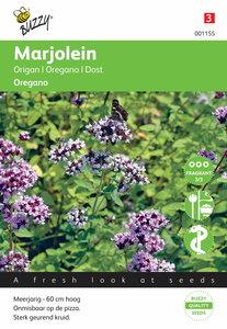 Marjolein - Oregano zaden - voorkant