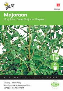 Majoraan hortensis zaden - voorkant