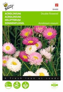 Acrolinium dubbelbloemig gemengd zaden - voorkant