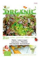 Biologische Pluksla Red Salad Bowl zaden