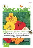 Biologische hoge Oost-Indische kers (gemengd) zaden