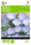 Haagbloem Hemelsblauw Nemophila zaden - voorkant
