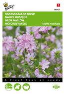 Muskus Kaasjeskruid roze Malva zaden - voorkant